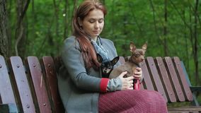 Pensive woman sits on a bench in the woods and irones two small dogs on her knees. A pensive woman sits on a bench in the woods and irones two small dogs on her stock video