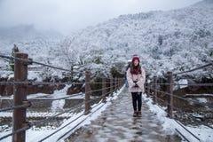 Pensjonat w Shirakawago wiosce w Gifu, Japonia z śnieżną pokrywą obraz stock