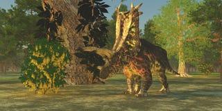 Pentaceratops恐龙 免版税库存照片