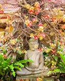 Pentacme Siamensis and Buddha Royalty Free Stock Photo