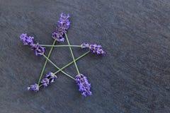 Pentagram - μάγισσα, Wicca, ειδωλολατρικό σύμβολο φιαγμένο από lavender ακίδες λουλουδιών στο γκρίζο/γκρίζο κλίμα πλακών στοκ εικόνες