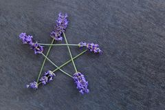 Pentagram - Witch, Wicca, Pagan symbol made of lavender flower spikes against gray / grey slate background. Pentagram - Witch, Wicca, Pagan symbol made of purple stock photo