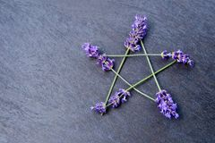Pentagram - Witch, Wicca, Pagan symbol made of lavender flower spikes against gray / grey slate background. Pentagram - Witch, Wicca, Pagan symbol made of purple royalty free stock images