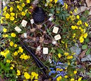 Pentagramma di legno, rune e candele nere in fiori immagine stock