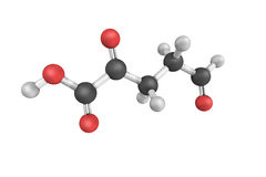 Pentanoic acid, also known as valeric acid with a primary use in Royalty Free Stock Photography