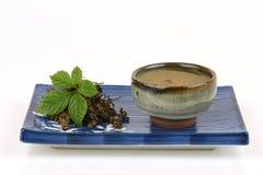 Pentaphyllum chinois Thunb Makino de Gynostemma de nom de Jiaogulan Photographie stock libre de droits