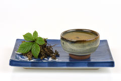 Pentaphyllum Thunb Makino van Gynostemma van de Jiaogulan Chinese naam royalty-vrije stock fotografie