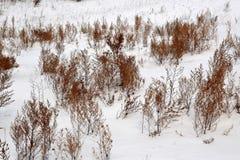 Pente abandonnée de colline couverte de neige Photo stock