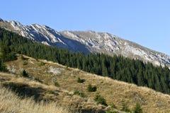 Pente de montagne Image libre de droits