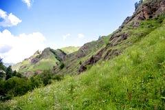 Pente de montagne Photographie stock libre de droits