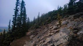 Pente de montagne Image stock
