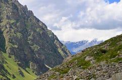Pente de montagne et pré alpin Photos stock