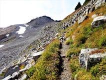 Pente de roche volcanique sur la traînée de Ridge de lagopède alpin Photographie stock libre de droits