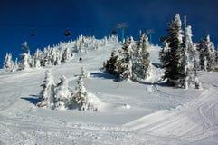 Pente de ski dans la forêt de neige Photographie stock libre de droits