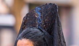Pente do cabelo Imagens de Stock Royalty Free
