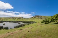 Pente interne du volcan de Rano Raraku avec le moai souterrain photos libres de droits