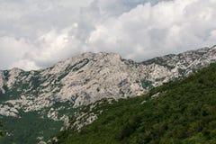 Pente pure des arêtes et des forêts sur des flancs de coteau en montagnes Photographie stock