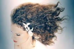 Penteado da mulher elegante de cabelo encaracolado imagem de stock