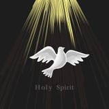 Pentecostés domingo Paloma en la luz de la luna ilustración del vector