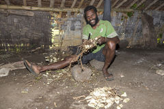 Pentecost, Republic of Vanuatu, July 21st, 2014, Indigenous men. Participate in traditional Kava Ceremony. The consumption of the drink is a form of welcome and Stock Photo