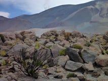 Pentes autour d'isluga de volcan à l'altiplano chilien Photo libre de droits