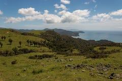 Pentes boisées en péninsule de Coromandel Images stock