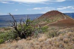 Pentes d'Hawaï - de Mauna Kea image libre de droits