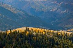 Pentes de montagne dans l'automne Photographie stock libre de droits