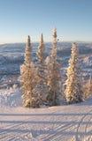 Pentes de ski à l'hiver photos libres de droits