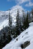 Pentes en montagnes de cascade Photos libres de droits