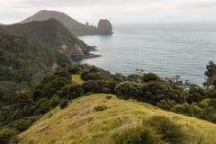 Pentes herbeuses en péninsule de Coromandel Photos libres de droits