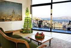 Penthouse and christmas tree Stock Photos