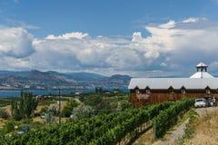 Penticton, Канада - 4-ое августа 2018: Взгляд винодельни горного склона в Британской Колумбии Канаде Penticton долины Okanagan стоковое фото