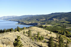 Penticton British Columbia Okanagan Valley. View of Naramata from Munson Mountain located in Penticton, British Columbia, Canada. Penticton is located in the Stock Photos