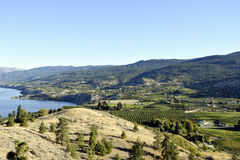 Penticton British Columbia Okanagan Valley. View of Naramata from Munson Mountain located in Penticton, British Columbia, Canada. Penticton is located in the Royalty Free Stock Images