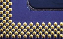 Pentium do processador do processador central dos pinos do chip de computador ampliado Imagens de Stock