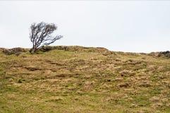 Pentland wzgórza Fotografia Stock