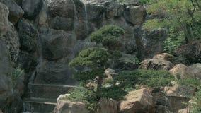 Pentola della cascata precipitante a cascata di bello velo video d archivio