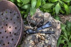 Pentola per le castagne, il dispositivo d'avviamento di fuoco e la lumaca sul tronco di albero nella foresta illustrazione di stock