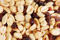 Penuts Stock Images
