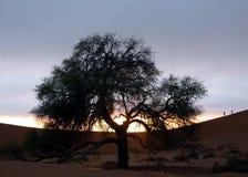 Peolple and desert. Sunrise in the desert: Sussusvlei, Namibia Stock Image