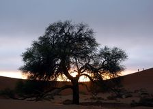 Peolple i pustynia Obraz Stock