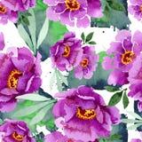 Peonía y flor botánica floral del ramo suculento Sistema del ejemplo de la acuarela Modelo inconsútil del fondo stock de ilustración