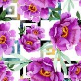 Peonía y flor botánica floral del ramo suculento Sistema del ejemplo de la acuarela Modelo inconsútil del fondo libre illustration