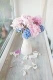 Peonía y jacinto rosados Fotos de archivo libres de regalías