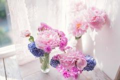 Peonía y jacinto rosados Imágenes de archivo libres de regalías