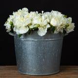 Peonías blancas en un cubo del metal Foto de archivo libre de regalías