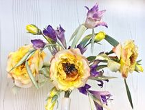 Peonías e iris amarillos en un florero blanco Flowe de la sede artificial Imagen de archivo