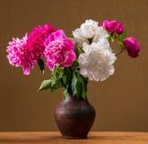 Peonías en florero Fotografía de archivo libre de regalías