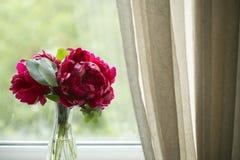 Peonías rojas en el florero en la ventana Imagenes de archivo